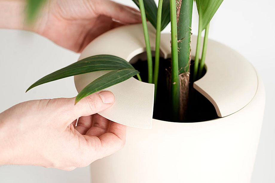 ceramica-plantas-alicia y xenia-bas (2)