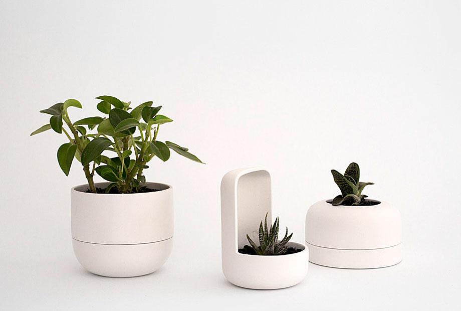 ceramica-plantas-alicia y xenia-bas (3)