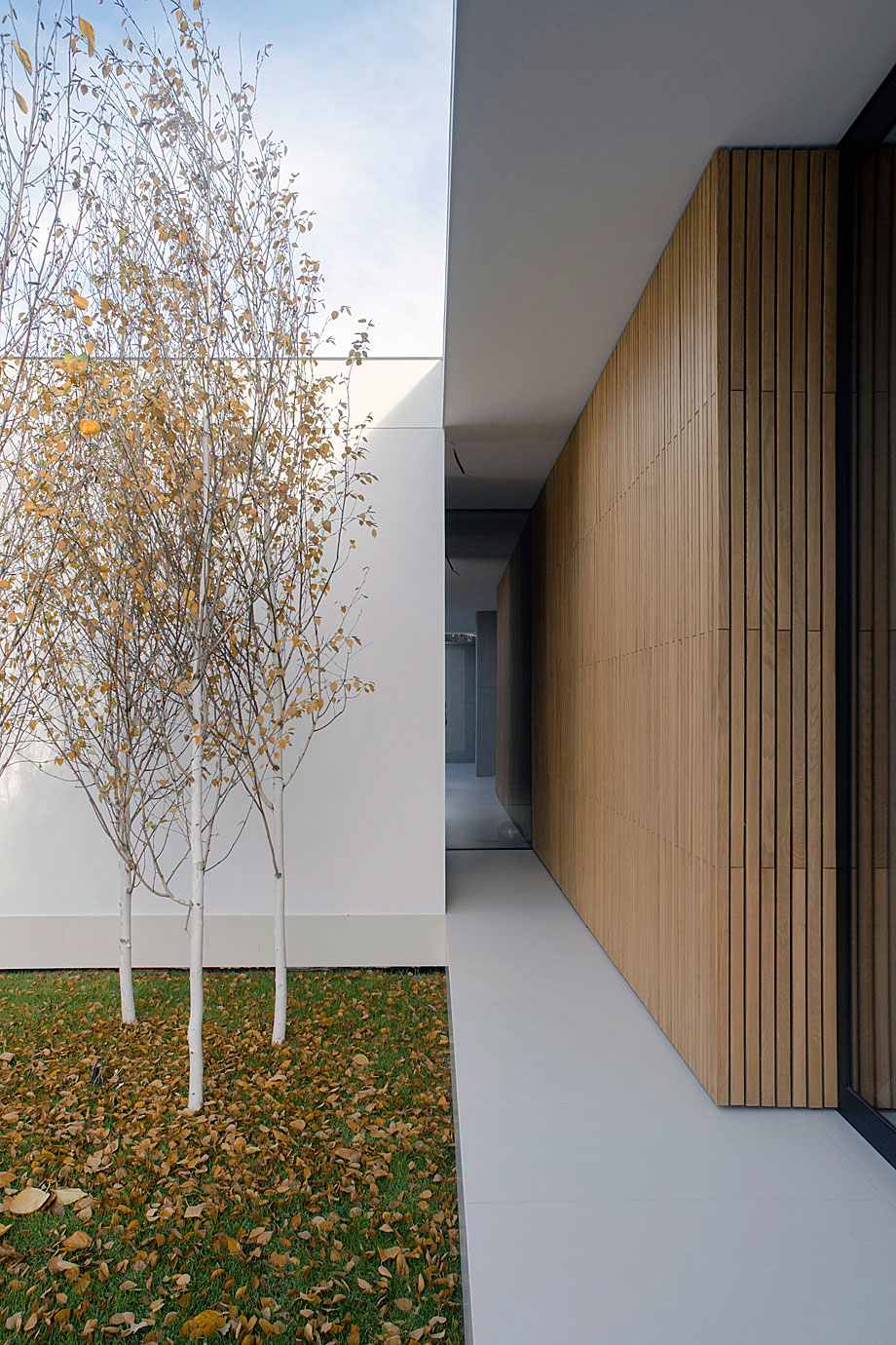 piano-house-line-architects-9