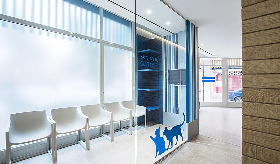 clinica-veterinaria-constitucion-dobleese (5)