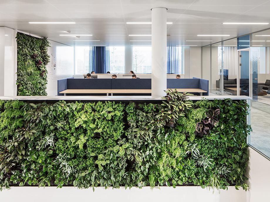 oficina 07 de i29 interior architects (4)