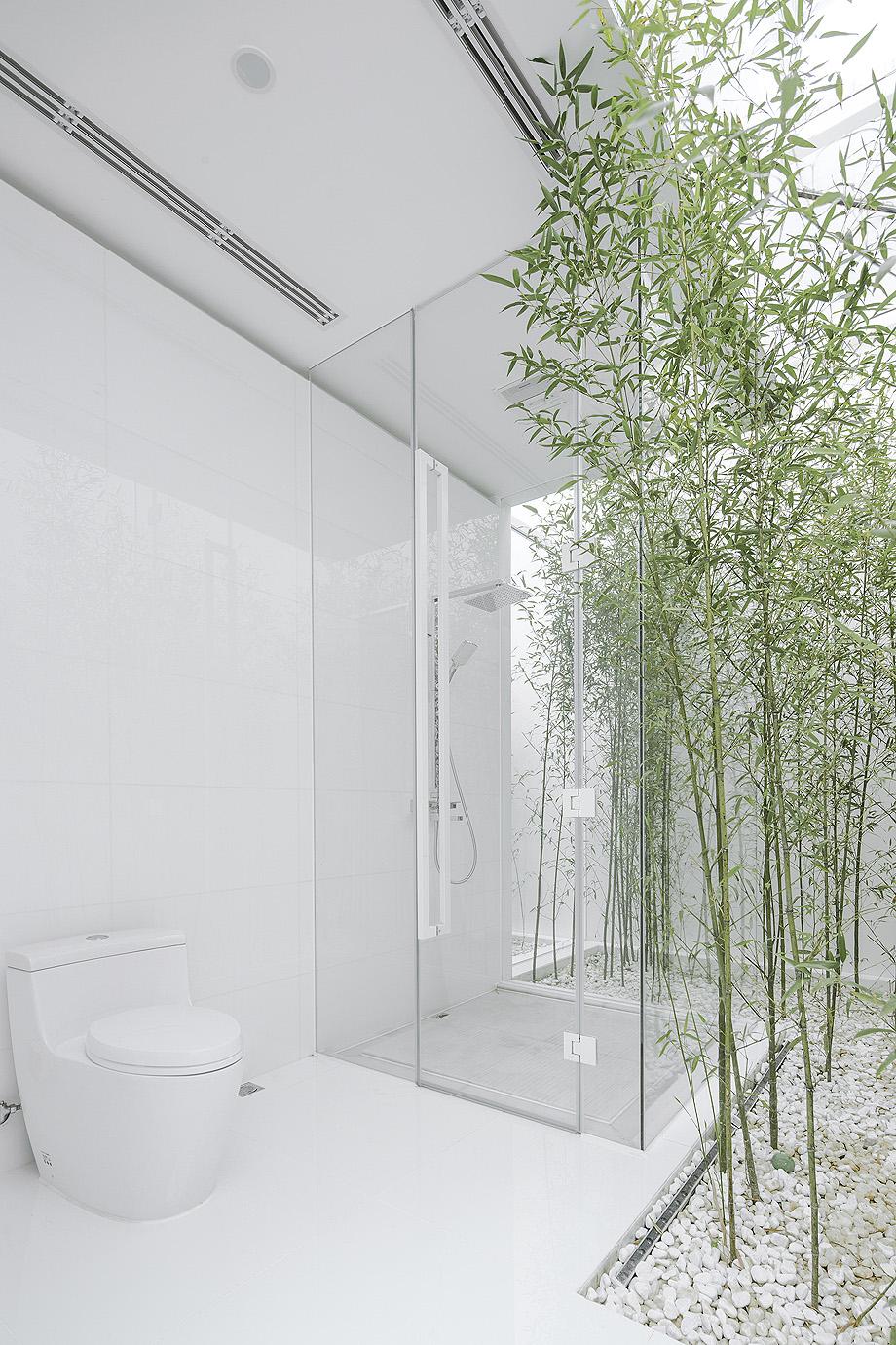 jardin de bambu en la terraza de v studio (16)