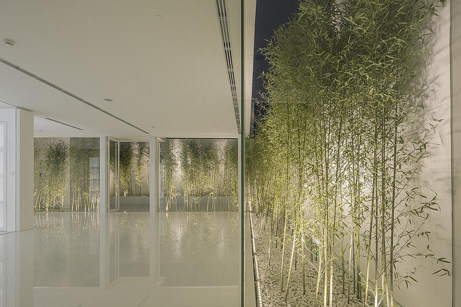 jardin de bambu en la terraza de v studio (19)