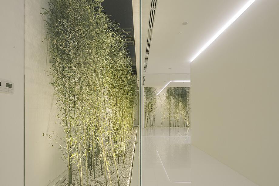 jardin de bambu en la terraza de v studio (20)
