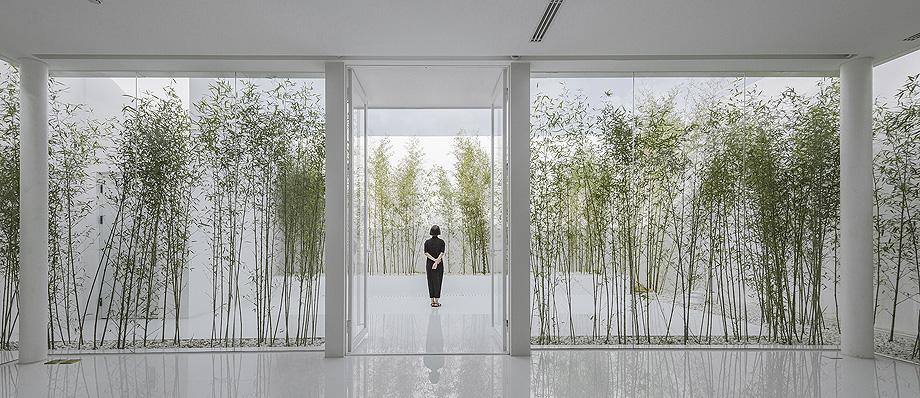 jardin de bambu en la terraza de v studio (4)