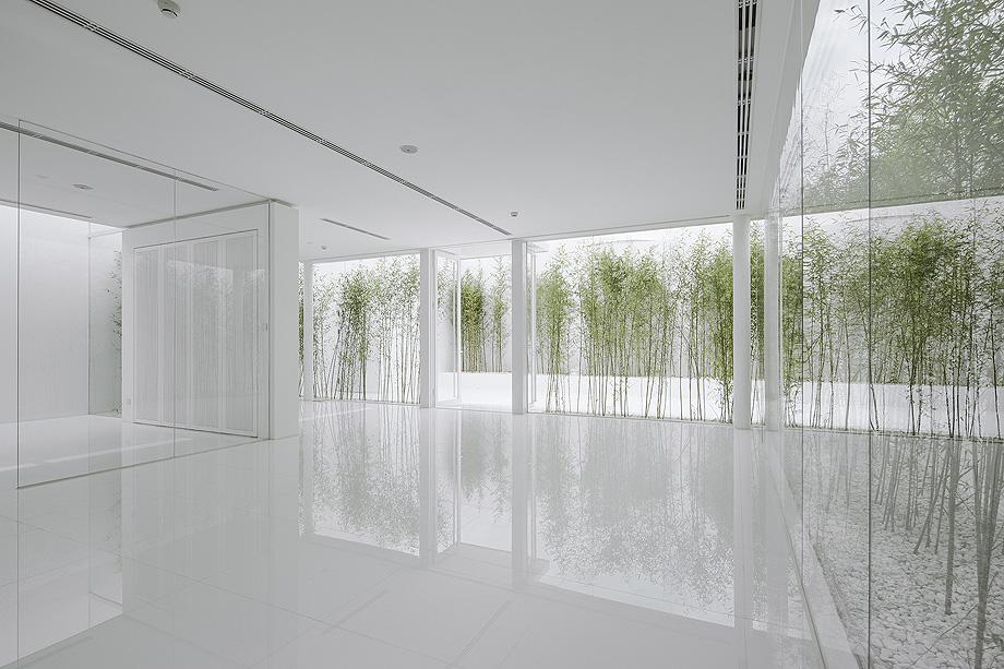 jardin de bambu en la terraza de v studio (6)