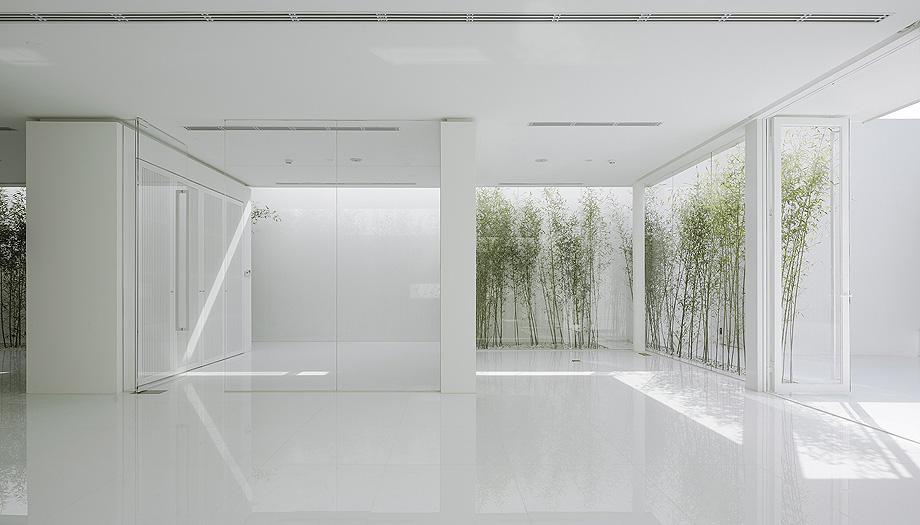 jardin de bambu en la terraza de v studio (7)