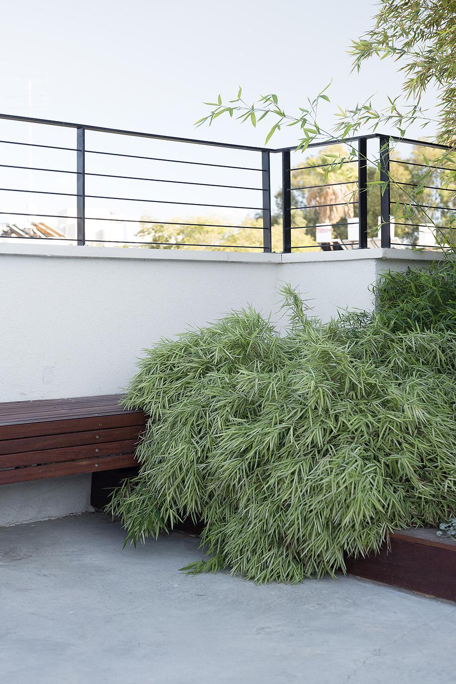 un jardin en la terraza por xs studio - foto gidon levin (20)