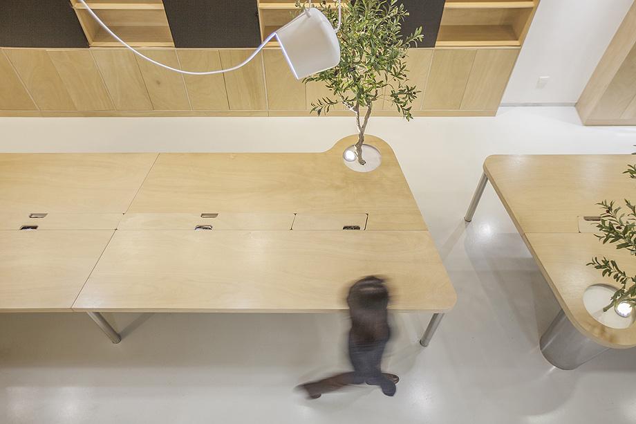 oficina con plantas de towodesign - foto towodesign (15)