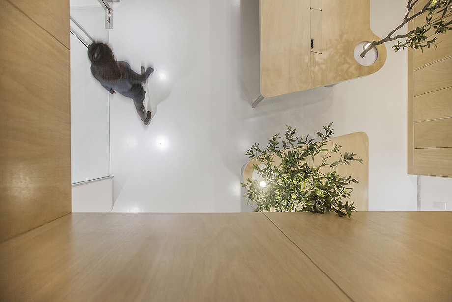 oficina con plantas de towodesign - foto towodesign (16)
