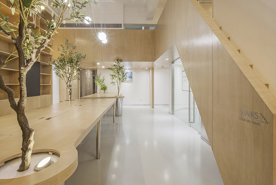 oficina con plantas de towodesign - foto towodesign (17)