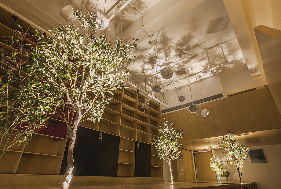 oficina con plantas de towodesign - foto towodesign (26)