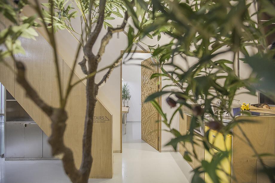oficina con plantas de towodesign - foto towodesign (9)