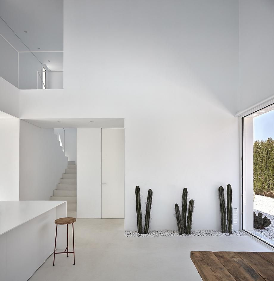 carmen house de carles faus arquitectura - foto mariela apollonio (17)