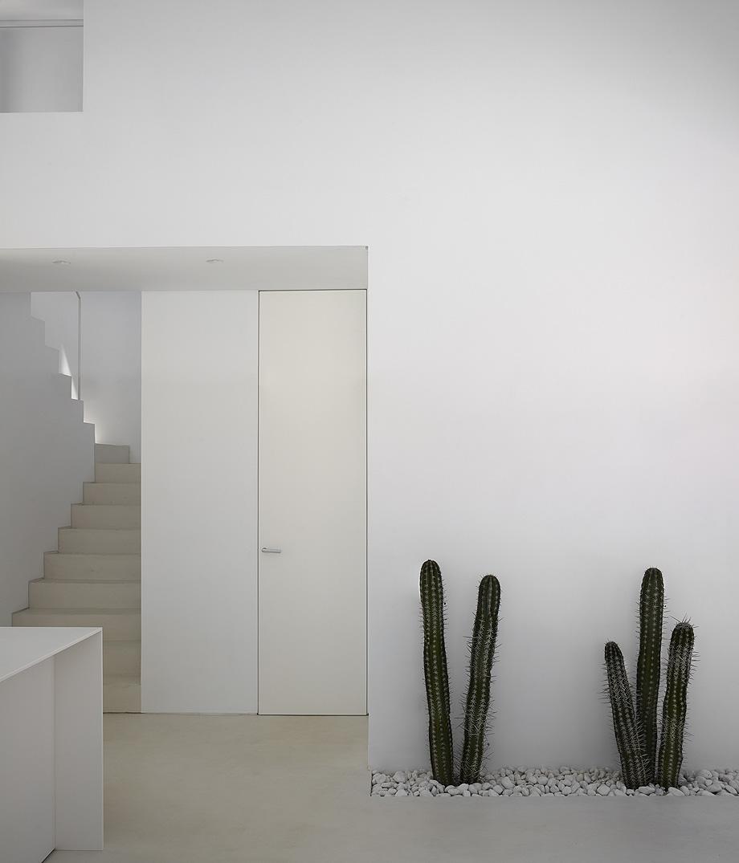 carmen house de carles faus arquitectura - foto mariela apollonio (19)