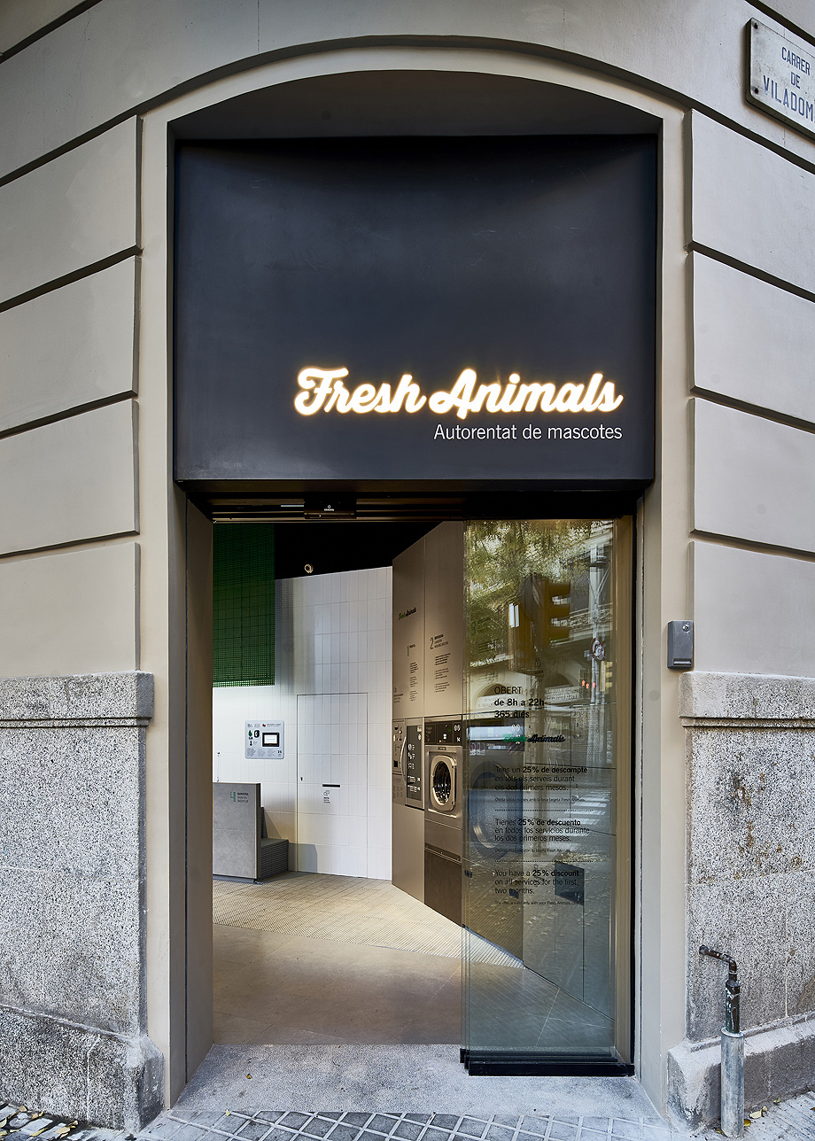 lavado mascotas fresh animals de frederic perers - foto jorge de jorge (1)