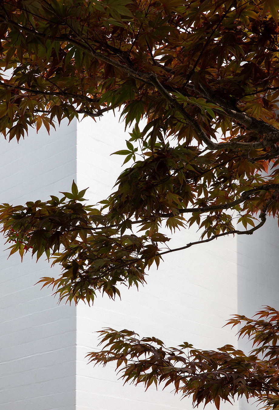 kinuta terrace de keiji ashizawa design y norm architects - foto jonas bjerre-poulsen (19)