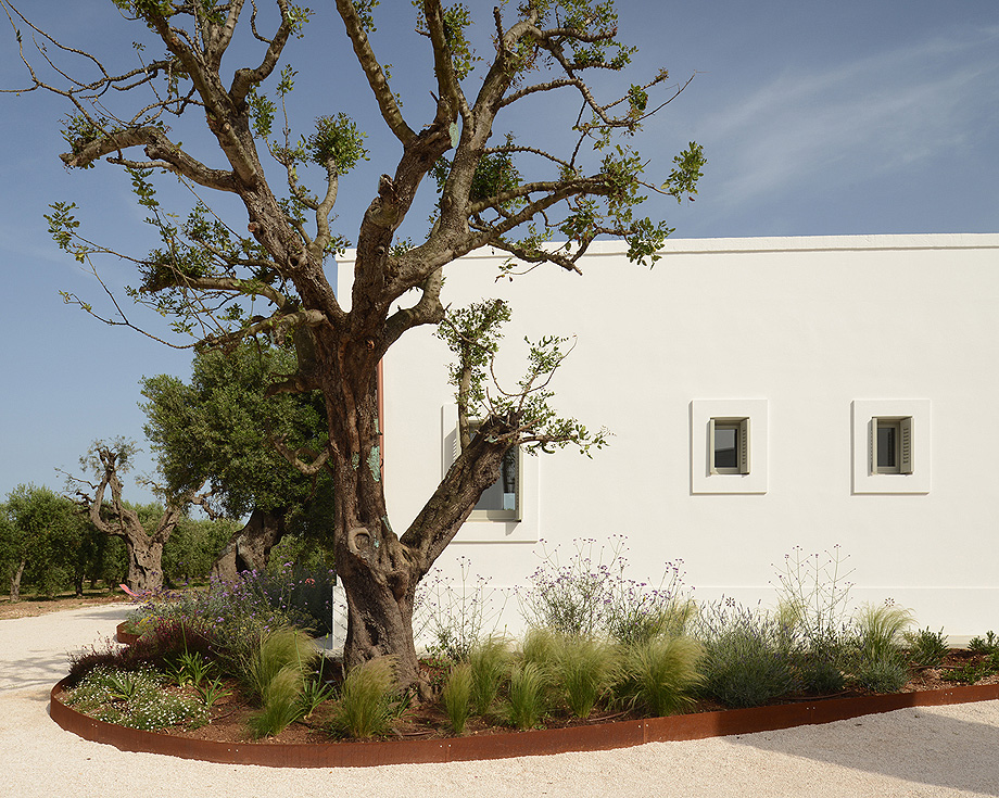 masseria pensato de deda & florio architetti - foto alan riddle (6)