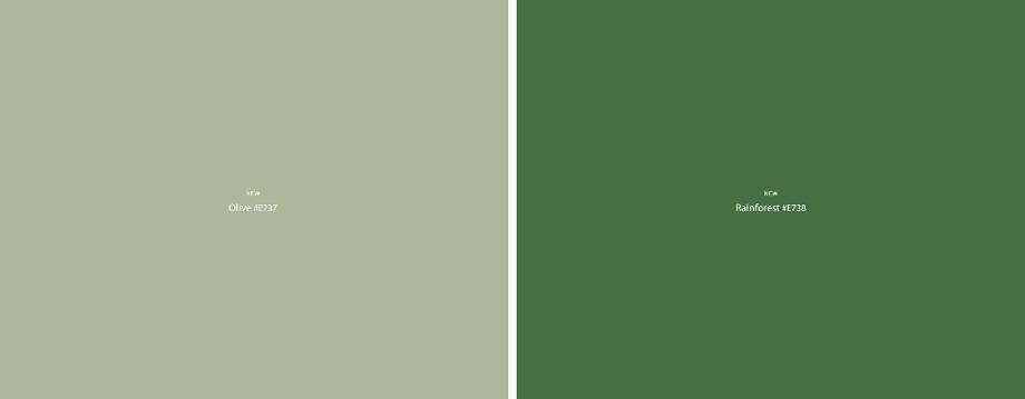 cin-valentine-green-revelation-2020-olive-e737-y-rainforest-e738