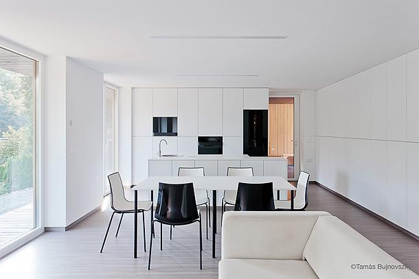 casa hireg de beres architects (4) - foto tamas bujnovszky