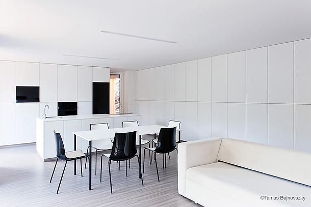 casa hireg de beres architects (5) - foto tamas bujnovszky