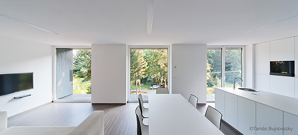 casa hireg de beres architects (7) - foto tamas bujnovszky